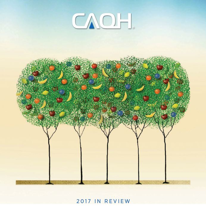 2017 CAQH Annual Report image