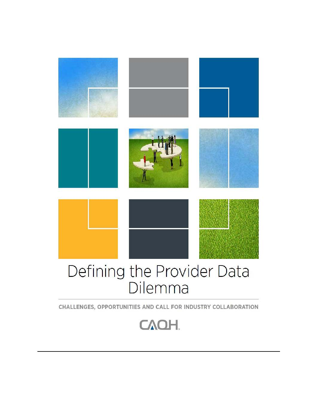 https://www.caqh.org/sites/default/files/explorations/defining-provider-data-white-paper.pdf